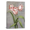 iCanvas 'Red-Striped Tulips' by John Zaccheo Graphic Art on Canvas