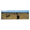 iCanvas Panoramic Group of Horses and Yurts in a Field, Independent Mongolia Photographic Print on Canvas