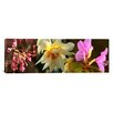 iCanvas Panoramic Details of Flowers Photographic Print on Canvas