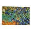 iCanvas 'Irises' by Vincent Van Gogh Painting Print on Canvas