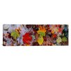 iCanvas Panoramic Frost on Leaves, Vermont Photographic Print on Canvas