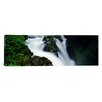 iCanvas Panoramic Sol Duc Falls, Olympic National Park, Washington State Photographic Print on Canvas