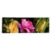 iCanvas Panoramic Close-up of Roses Photographic Print on Canvas