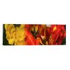 iCanvas Panoramic 'Close-up of Tulips' Photographic Print on Canvas