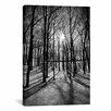 iCanvas Scenic Forest Ridges Moraine Photographic Print on Canvas