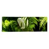 iCanvas Panoramic Close-up of Flowers and Leaves Photographic Print on Canvas