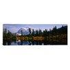iCanvas Panoramic Mt Rainier, Mt Rainier National Park, Washington State Photographic Print on Canvas