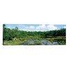 iCanvas Panoramic Watamu Marine National Park, Watamu, Kenya Photographic Print on Canvas