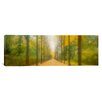 iCanvas Panoramic Path Schwetzingen, Germany Photographic Print on Canvas