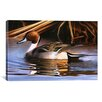 iCanvas Decorative Art 'Northern Pintail I' by Clarence Stewart Photographic Print on Canvas