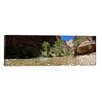 iCanvas Panoramic 'North Fork of the Virgin River, Zion National Park, Utah' Photographic Print on Canvas