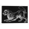 iCanvas Astronomy and Space 'Leo (Lion) II' Painting Print on Canvas