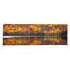 iCanvas Panoramic Laurentide Quebec Canada Photographic Prints on Canvas