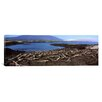 iCanvas Panoramic 'Marine Iguanas at Fernandina Island, Galapagos Islands, Ecuador' Photographic Print on Canvas