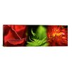 iCanvas Panoramic 'Leaves and Flowers' Photographic Print on Canvas