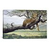 iCanvas 'Leopard' by Harro Maass Painting Print on Canvas