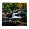 "iCanvas ""Little River Elkmont"" by J.D. McFarlan Photographic Print on Canvas"