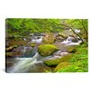 iCanvas 'Little River Rapids' by Bob Rouse Graphic Art on Canvas