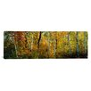 iCanvas Panoramic Lac Du Flambeau Wisconsin Photographic Print on Canvas