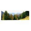 iCanvas Panoramic Dolomites, Veneto, Italy Photographic Print on Canvas