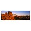 iCanvas Panoramic Devil's Playground, Namibia Photographic Print on Canvas