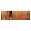 iCanvas Panoramic Person Praying in Front of Western Wall, Jerusalem, Israel Photographic Print on Canvas