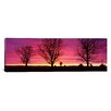 iCanvas Panoramic Oak Trees, Sunset, Sweden Photographic Print on Canvas