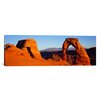 iCanvas Panoramic 'Delicate Arch, Arches National Park, Utah' Photographic Print on Canvas