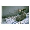 iCanvas 'Moose in the Brush' by Ron Parker Painting Print on Canvas