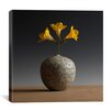 """iCanvas """"New Chinese Maple"""" by Geoffrey Ansel Agrons Photographic Print on Canvas"""