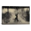 iCanvas Rhizomes by Geoffrey Ansel Agrons Photographic Print on Canvas