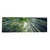 iCanvas Panoramic 'Hokokuji Temple, Honshu, Japan' Photographic Print on Canvas