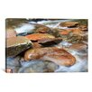 iCanvas 'Rocks V' by Bob Rouse Photographic Print on Canvas