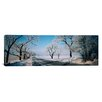 iCanvas Road Passing Through Winter Fields, Illinois Photographic Print on Canvas