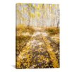iCanvas Road To Fall by Dan Ballard Photographic Print on Canvas