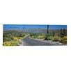 iCanvas Panoramic Saguaro National Park, Tucson, Pima County, Arizona Photographic Print on Canvas