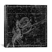 iCanvas Maps and Charts Prints Celestial Atlas - Plate 19 (Libra, Scorpio) by Alexander Jamieson Graphic Art on Canvas