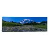 iCanvas Panoramic Wildflowers on a Landscape, Mt Rainier National Park, Washington State Photographic Print on Canvas