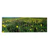 iCanvas Panoramic 'West Maroon Pass, Crested Butte, Gunnison County, Colorado' Photographic Print on Canvas