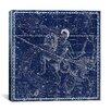 iCanvas Maps and Charts Celestial Atlas - Plate 21 (Capricornus, Aquarius) by Alexander Jamieson Graphic Art on Canvas in Blue