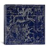 iCanvas Celestial Atlas - Plate 25 (Canis Major) by Alexander Jamieson Graphic Art on Canvas in Negative