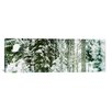 iCanvas Panoramic Snow Covered Evergreen Trees at Stevens Pass, Washington State Photographic Print on Canvas in Green and White