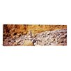 iCanvas Panoramic Stack of Stones on the Beach, California Photographic Print on Canvas