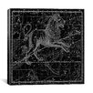 iCanvas Celestial Atlas - Plate 17 (Leo) by Alexander Jamieson Graphic Art on Canvas in Black