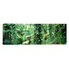 iCanvas Panoramic Vegetation Seychelles Photographic Print on Canvas