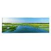 iCanvas Panoramic Sea Grass in the Sea, Atlantic Coast, Jacksonville, Florida Photographic Print on Canvas