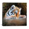 "iCanvas ""Tiger Cub Face"" by Pip McGarry Painting Print on  Canvas"