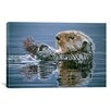 """iCanvas """"Sea Otter with Urchin"""" Canvas Wall Art by Ron Parker"""