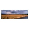 iCanvas Panoramic 'Florida, Big Cypress National Preserve along Tamiami Trail Everglades National Park' Photographic Print on Canvas
