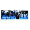 iCanvas Panoramic Duke Kahanamoku Statue, Waikiki Beach, Honolulu, Oahu, Hawaii Photographic Print on Wrapped Canvas